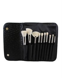Morphe 10 PIECE DELUXE SET W/ OSTRICH SKIN SNAP CASE - Set 692